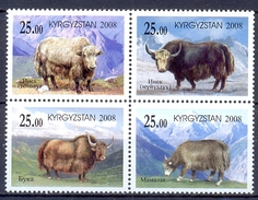 KIRGISIE  (AZI 240)