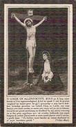 DP. LEONIE SCHELSTRAETE  ° URSEL 1852 - + SOMERGEM 1923 - Religion & Esotericism