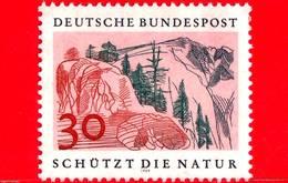 Nuovo - MNH - GERMANIA - 1969 - Anno Europeo Della Conservazione Della Natura - 30