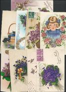 Lot Thème Fleurs Sur La Violette Pour Myrtille - Fleurs, Plantes & Arbres