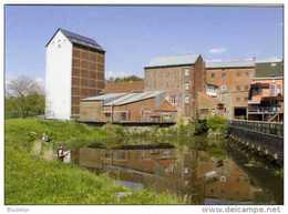 VIANE Bij Geraardbergen (O.-Vl.) - Molen/moulin - Fraaie Opname Van De Mertensmolen Gezien Vanuit Het Zuiden - Geraardsbergen