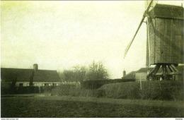 LANDEGEM Bij Nevele (O.-Vl.) - Molen/moulin - De Verdwenen Herenthoekmolen Tijdens 1914-1918 Voor Zijn Verwoesting - Nevele