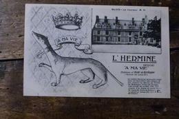 41, BLOIS LE CHATEAU, L'HERMINE, A MA VIE - Blois