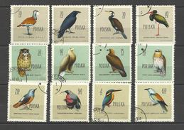 Pologne Poland  Timbres Oblitérés  ° 1070.81 Oiseaux Birds Aigle Chouette Hibou Cigogne Martin Pêcheur Polen