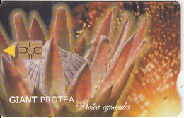 SOUTH AFRICA - Giant Protea, Chip GEM3.3, Exp.date 06/02, Used