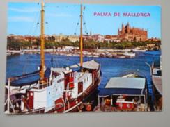 ESPAGNE ISLAS BALEARES PALMA DE MALLORCA RINCON DE LA BAGHIA Y CATEDRAL - Mallorca