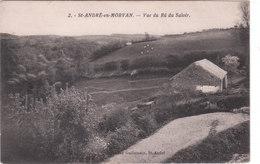 Carte Postale Ancienne De La Nièvre - Saint André En Morvan - Vue Du Rû Du Saloir - Frankreich