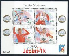 NORWEGEN Mi.Nr. Block  19 Olympische Winterspiele 1994, Lillehammer  -used