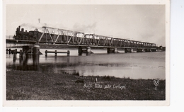Bulli Tilts Par Lielupi   Railway Eisenbahn Ca 1925 NICE OLD PHOTO 2 Scans - Lettonie