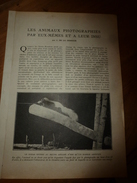 1917 LSELV :Les Animaux Photographiés Par Eux-mêmes Et A Leur Insu  (par J. De La Cerisaie) - Photographie