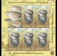 Kirgizië / Kyrgyzstan - Postfris / MNH - Sheet Paddenstoelen (50) 2017 - Kirgizië