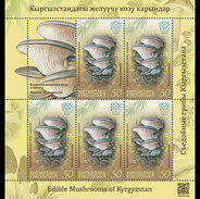 Kirgizië / Kyrgyzstan - Postfris / MNH - Sheet Paddenstoelen (50) 2017