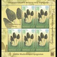 Kirgizië / Kyrgyzstan - Postfris / MNH - Sheet Paddenstoelen (100) 2017