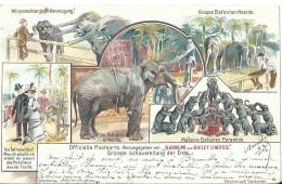 Circus Cirque Barnum And Bailey Limited - 1901 - Cartes Postales