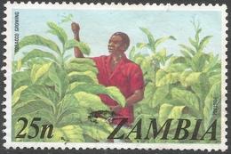 Zambia. 1975 Definitives. 25n Used. SG 236 - Zambia (1965-...)