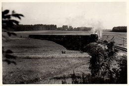 Photo Originale Train Vapeur De Voyageurs En Campagne Vers 1950/60 - Trains