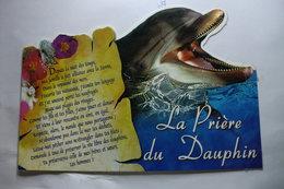 La Prière Du Dauphin - Dauphins