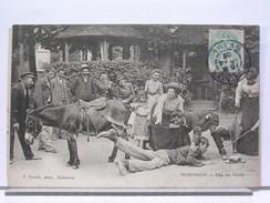 92 - ROBINSON - PAS DE VEINE - ANIMEE - ANE - 1906 - Le Plessis Robinson