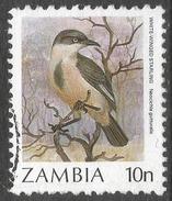 Zambia. 1987 Birds (1st Series). 10n Used. SG 485 - Zambia (1965-...)