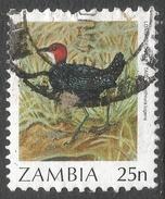 Zambia. 1987 Birds (1st Series). 25n Used. SG 487 - Zambia (1965-...)