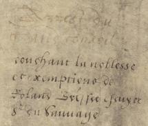Parchemin,1589,Tours, Arrêt Conseil Du Roi, Noblesse  Exemptions, De Brisset écuyer,seigneur De Tunnaye, Bailly, Tallion - Documents Historiques