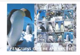 2003 British Antarctic Territory Penguins Of The Antarctic Miniature Sheet Of 12  MNH - Ungebraucht