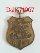 Medaille :Netherlands- Borne Karnoverco 1979  - Stichting Borns Carnaval) / Stichting Born's Carnival - Netherland