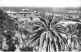 06 - ANTIBES - Vue Sur L'entrée Du Port Et Le Fort Carré - CPSM Format CPA Posté 1962 -  Alpes Maritimes - Autres