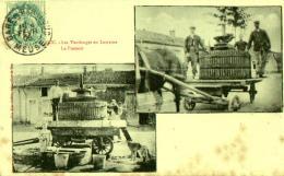 Les Vendanges En Lorraine à , BAR LE DUC , Le Pressoir . - Vignes