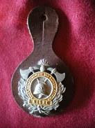 INSIGNE POMPIERS (pucelle)     SAPEURS POMPIERS Du Département De L'Aisne. - Pompieri