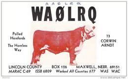 Amateur Radio QSL - AA0LRQ / WA0LRQ - Maxwell, NE -USA- 1976 - 2 Scans