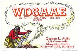 Amateur Radio QSL - WD8AAE - KI Sawyer Air Force Base, MI -USA- 1976 - 2 Scans