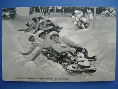 Chamonix. En Bobsleigh, Vers 1910. Dos Sali, TBE. - Sports D'hiver