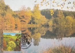 United Nations Vienna Maxicard 1988 4S Rettet Den Wald  (T15-34)