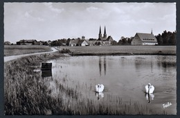 A4484 - Alte Foto Ansichtskarte - Neuendettelsau - Fritz Lauterbach - Frila - N. Gel TOP - Neuendettelsau