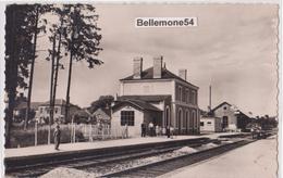Dept 61- Carte Postale Photo - VINGT HANAPS - La Gare ( Voir Scan Recto-verso) - Altri Comuni
