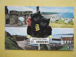 SAINT ANDREWS. Multivues. - Fife