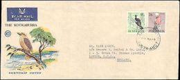 1950 AUSTRALIA SOUVENIR KOOKABURRA BIRD COVER TO ENGLAND - Bolli E Annullamenti