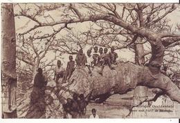 Cpa Afrique Occidentale - Cartes Postales