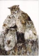 1998 , Birds , Owls , Postcard - Moldova