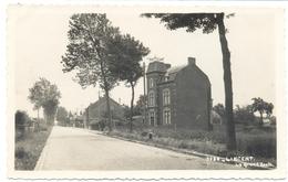 LIncent - La Grande Route - Lincent