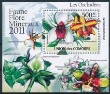 NB- Comores 2011 - BL2236, Faune , Flore, Minéraux, Fleurs, Fleurs Orchidées, Eriopsis Sceptrum.