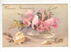(n°836-1) CPA  KLEIN CATARINA Heureux Anniversaire Orchidées + Mimosa Dans Un Vase +rose Jaune à Coté (série 242 N°3) - Klein, Catharina