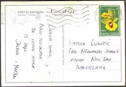 TUNISIEN - ORCHIDS On Postcard - 1990