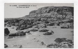 AUDRESSELLES - N° 2448 - LE CRAN AUX OEUFS - CPA NON VOYAGEE