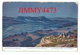CPA POST CARD - Le Champ Des Bergers Près De Bethléem Palästina En 1923 - Edit. C. A. Série 790  N° 57- Recto-Verso