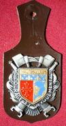 INSIGNE POMPIERS (pucelle)     SAPEURS POMPIERS Département De Hautes Alpes (05). - Pompieri
