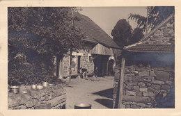 Walk-Malmedy - Refuge Du District Des Hautes Fagnes (animée, 1948)