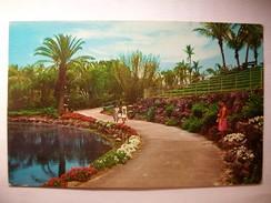Carte Postale Etats Unis Cape Coral ,Florida (Petit Format Couleur Circulée 1969 ) - Fort Myers
