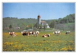39 - Monnet-la-Ville - Les Pâturages - Autres Communes